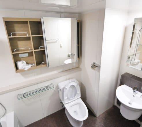 Möglichkeiten gegen verstopfte Toilette